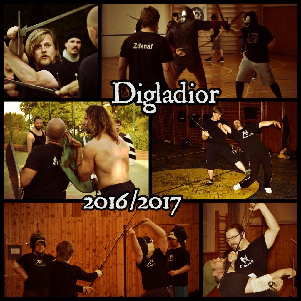 seminare_Digladior_2016-2017